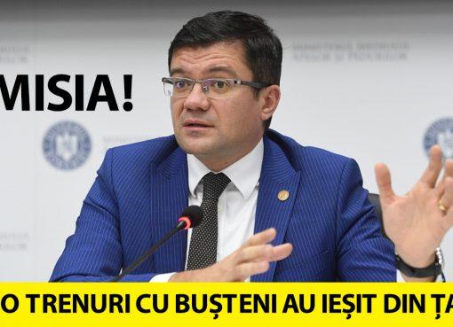 Demisie Costel Alexe